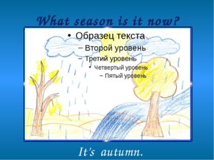 What season is it now? It's autumn.