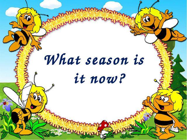 What season is it now?