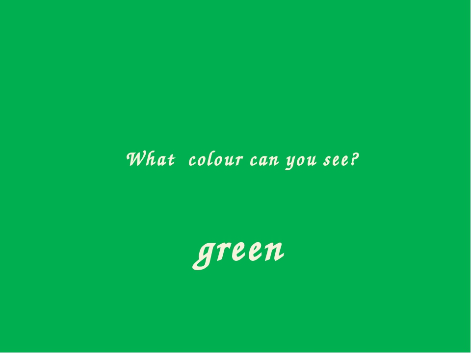 What colour can you see? green