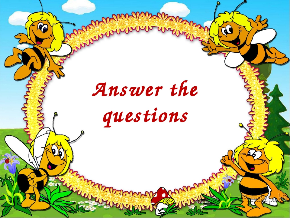 Answer the questions