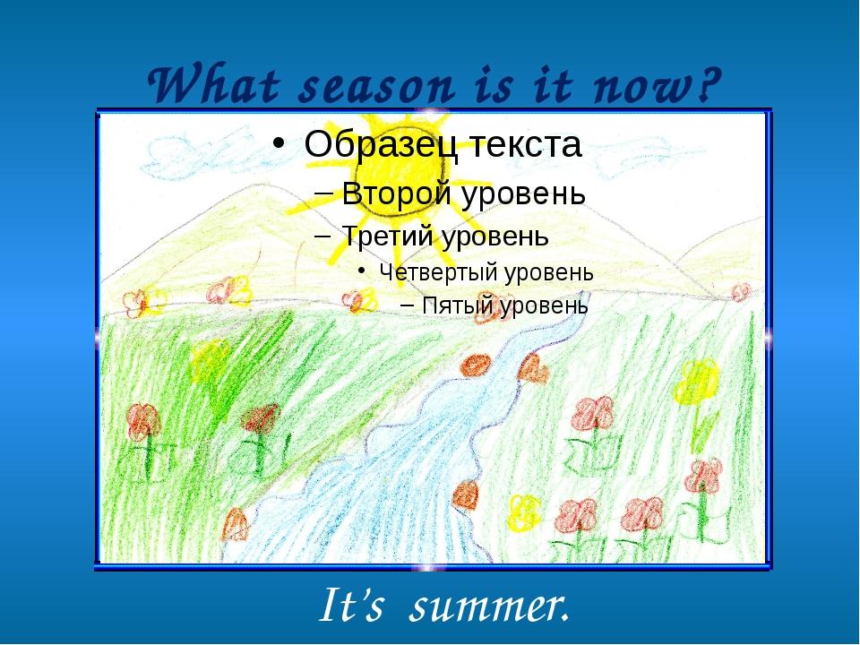 What season is it now? It's summer.