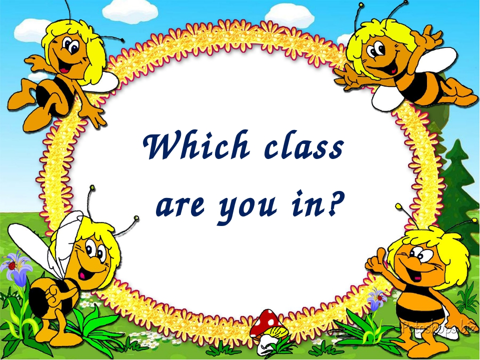 Which class are you in?