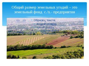 Общий размер земельных угодий – это земельный фонд с./х.- предприятия