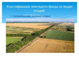 I. Сельскохозяйственные угодья: Классификация земельного фонда по видам угодий: