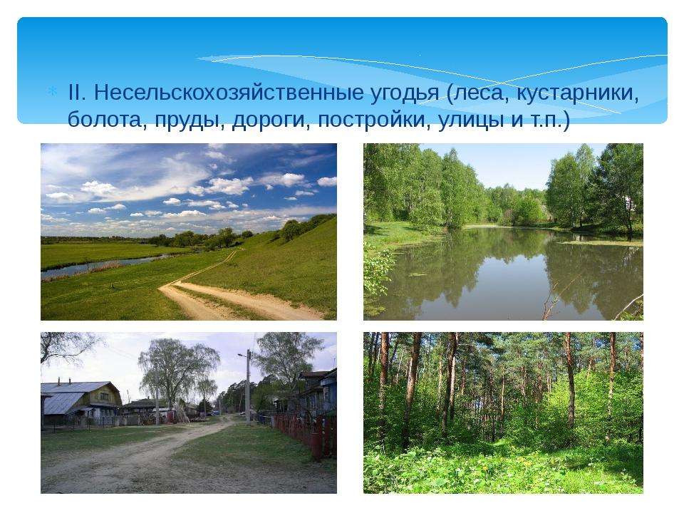 II. Несельскохозяйственные угодья (леса, кустарники, болота, пруды, дороги, п...