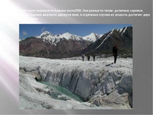 Общее число ледников на Кавказе около2050. Они разные по типам: долинные, кар
