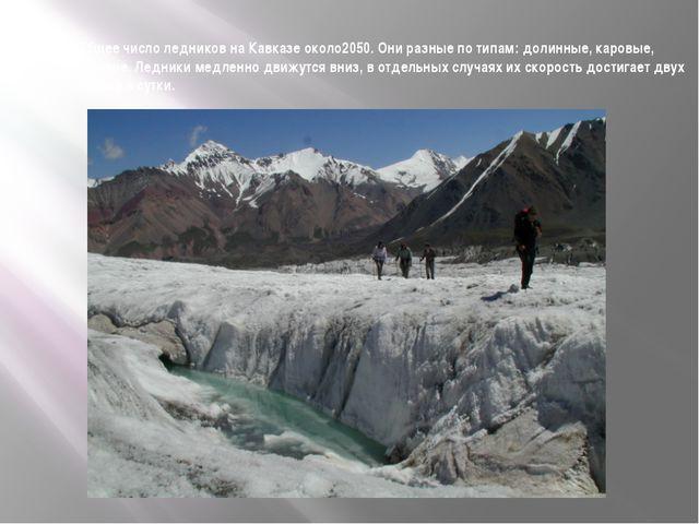 Общее число ледников на Кавказе около2050. Они разные по типам: долинные, кар...