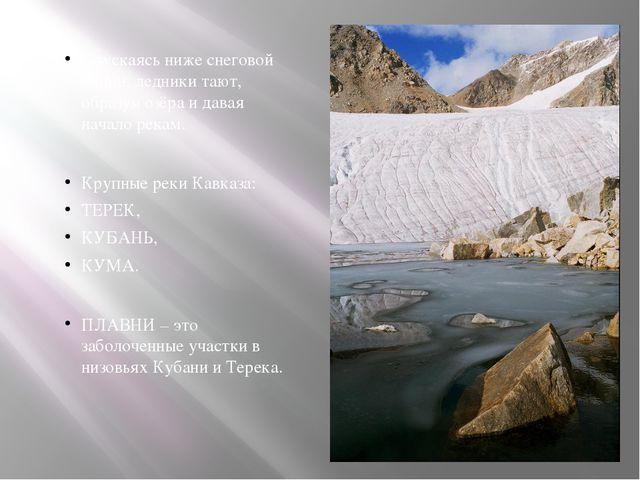 Спускаясь ниже снеговой линии, ледники тают, образуя озёра и давая начало ре...