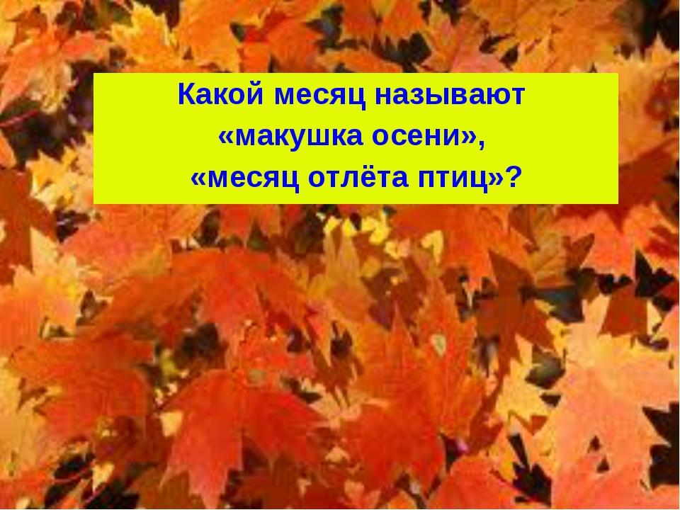 Какой месяц называют «макушка осени», «месяц отлёта птиц»?