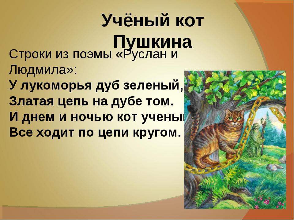 Учёный кот Пушкина Строки из поэмы «Руслан и Людмила»: У лукоморья дуб зелен...