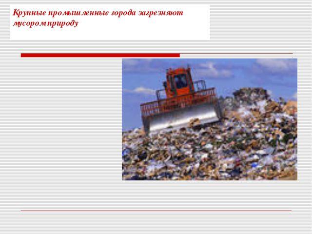 Крупные промышленные города загрезняют мусором природу