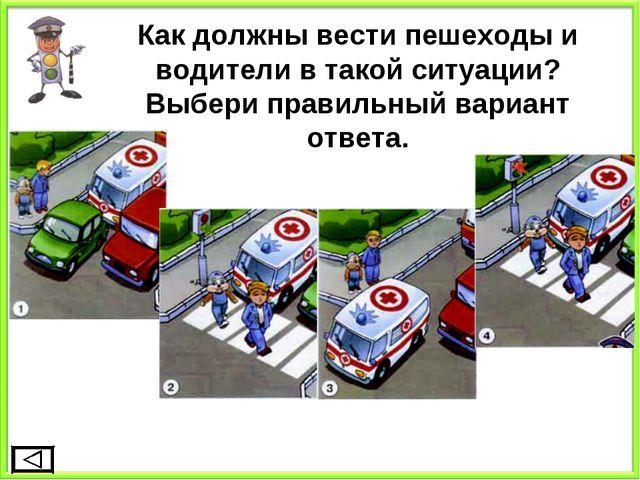 Как должны вести пешеходы и водители в такой ситуации? Выбери правильный вари...
