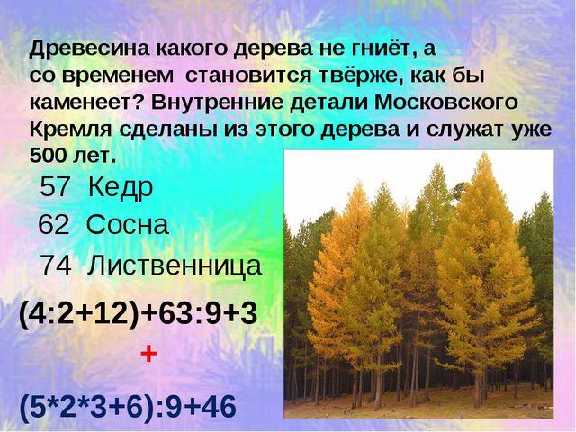 Древесина какого дерева не гниёт, а со временем становится твёрже, как бы кам...
