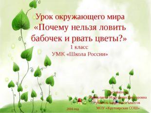 Урок окружающего мира «Почему нельзя ловить бабочек и рвать цветы?» 1 класс У