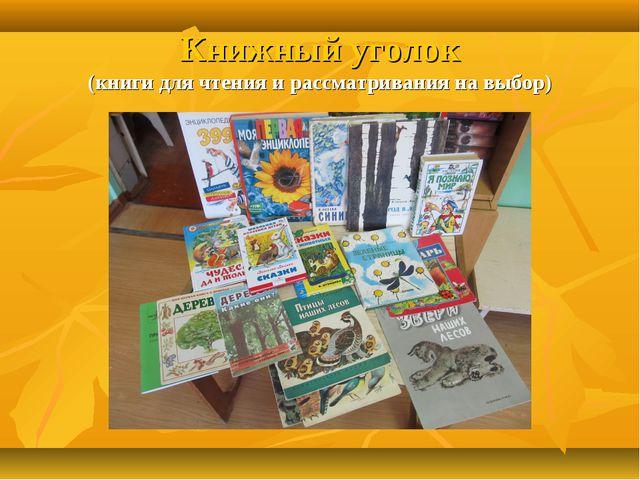 Книжный уголок (книги для чтения и рассматривания на выбор)