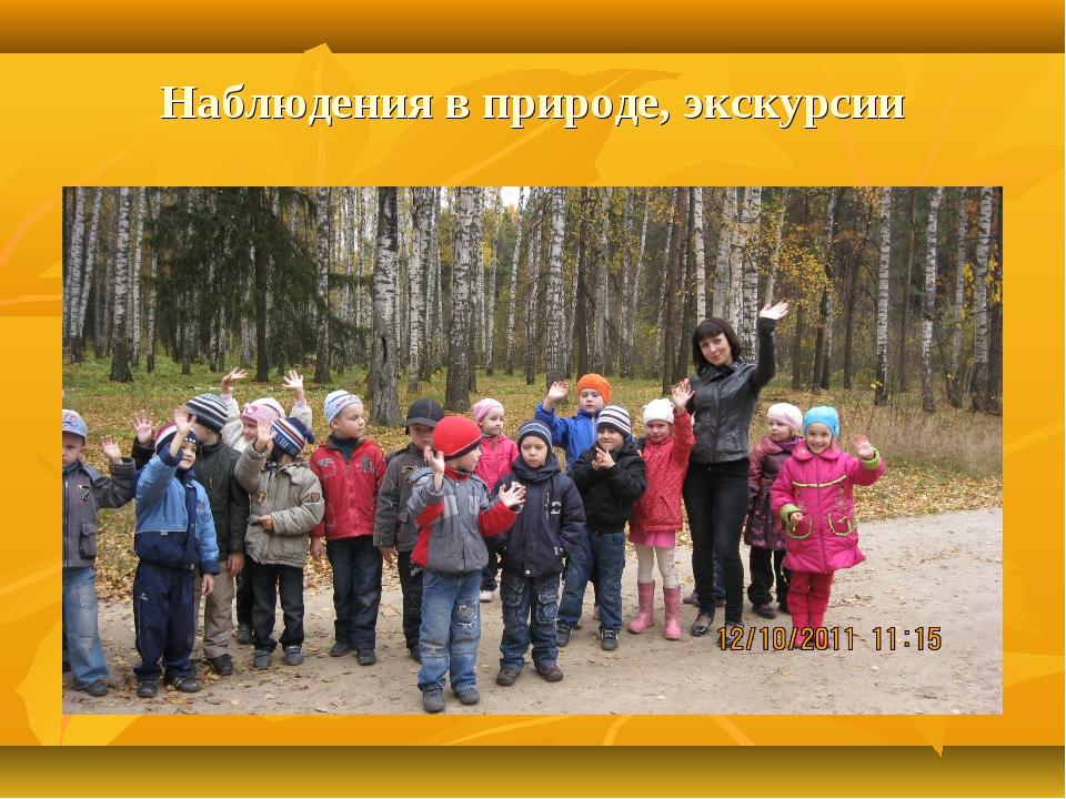 Наблюдения в природе, экскурсии