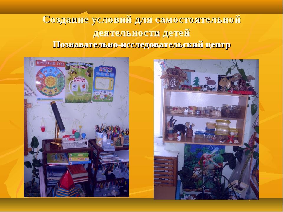 Создание условий для самостоятельной деятельности детей Познавательно-исследо...
