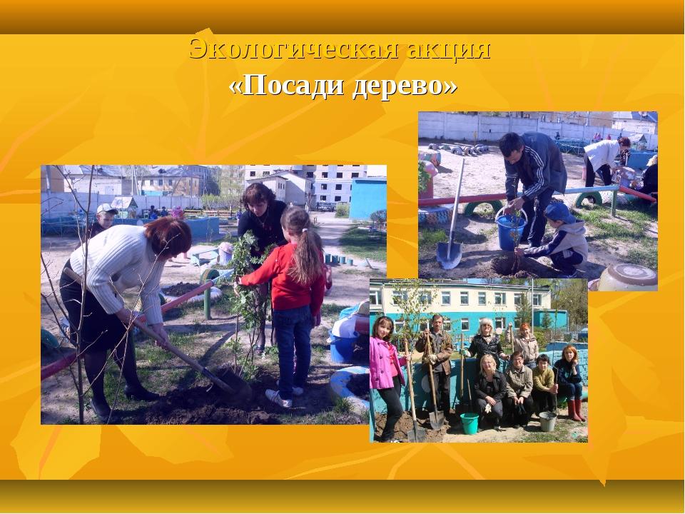 Экологическая акция «Посади дерево»