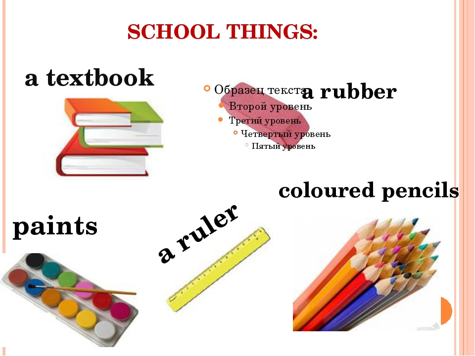 SCHOOL THINGS: a rubber a textbook paints coloured pencils a ruler