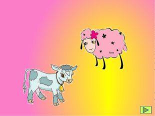 das Schaf das Kalb