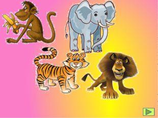 der Affe der Tiger der Elefant der Löwe
