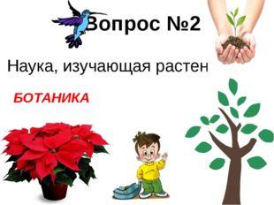 Вопрос №1 К какому семейству относится роза? РОЗОЦВЕТНЫЕ