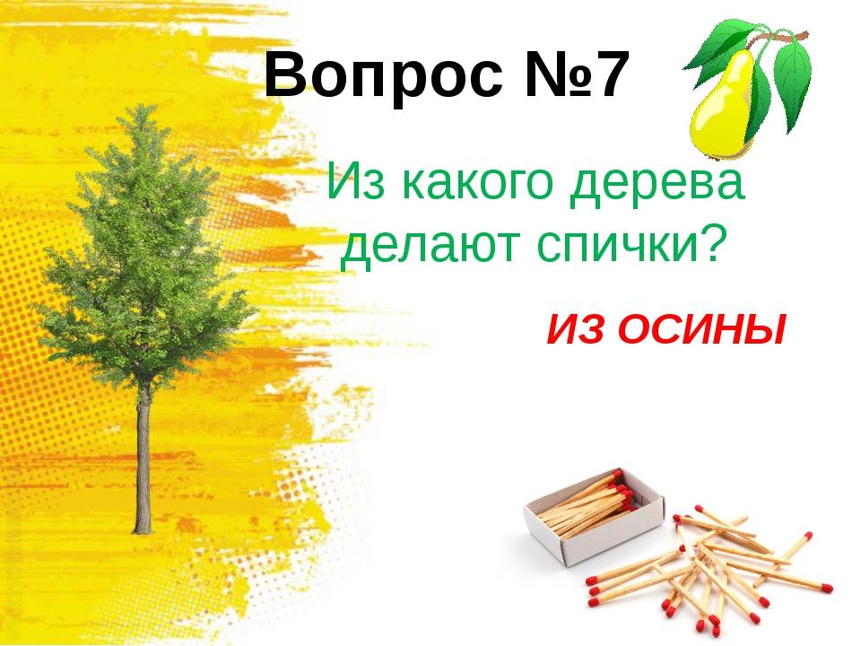 Вопрос №5 Какую траву слепые знают? КРАПИВА