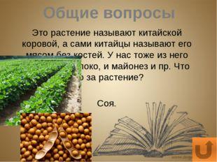 Экология Какая известная вам овощная культура наиболее чувствительна к кислот