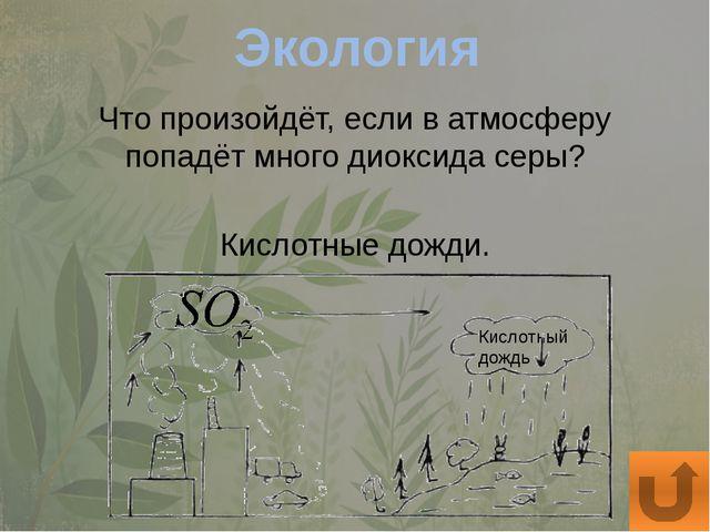Общие вопросы Какие животные используют реактивное движение? Медуза.