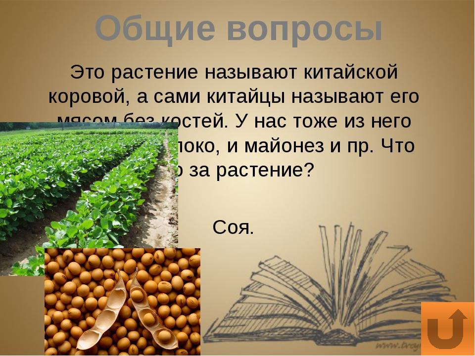 Экология Какая известная вам овощная культура наиболее чувствительна к кислот...