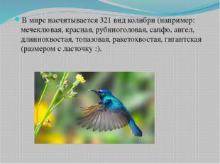 В мире насчитывается 321 вид колибри (например: мечеклювая, красная, рубиног