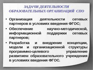 ЗАДАЧИ ДЕЯТЕЛЬНОСТИ ОБРАЗОВАТЕЛЬНЫХ ОРГАНИЗАЦИЙ СПО Организация деятельности