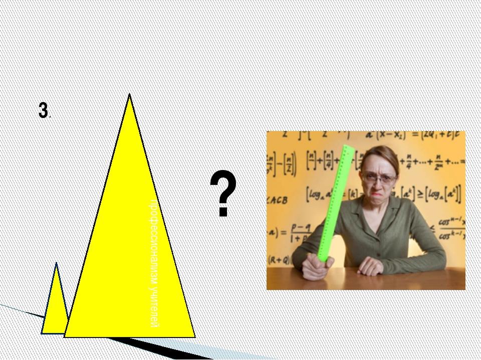 3. профессионализм учителей ?