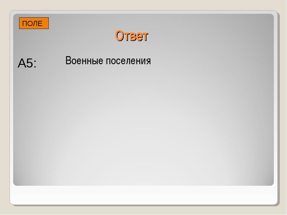 Ответ Военные поселения ПОЛЕ А5: