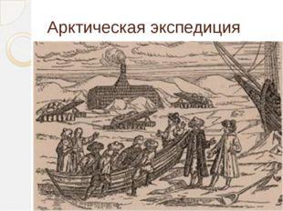 Арктическая экспедиция