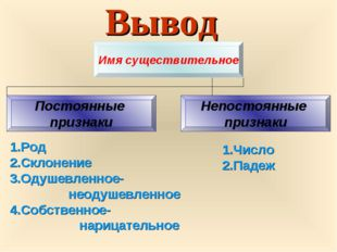 Вывод 1.Род 2.Склонение 3.Одушевленное- неодушевленное 4.Собственное- нарица