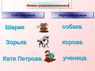 Шарик собака Зорька ученица корова Катя Петрова