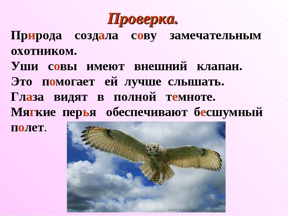 Проверка. Природа создала сову замечательным охотником. Уши совы имеют внешни...