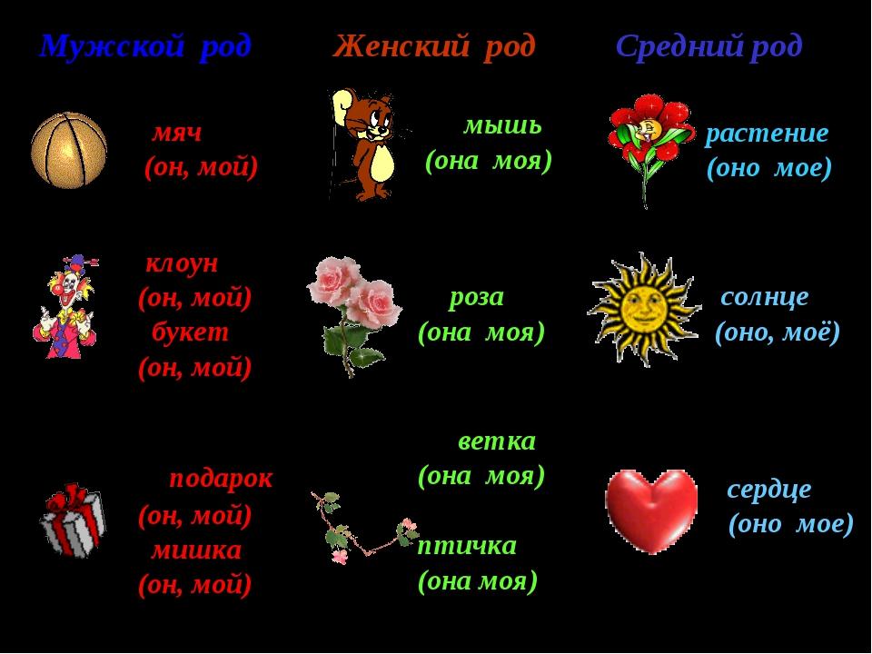 Женский род роза (она моя) растение (оно мое) ветка (она моя) птичка (она моя...