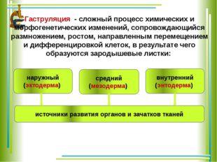 Гаструляция - сложный процесс химических и морфогенетических изменений, соп