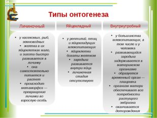 Типы онтогенеза Личиночный Яйцекладный Внутриутробный у насекомых, рыб, земно