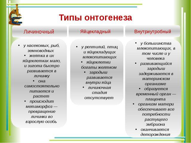 Типы онтогенеза Личиночный Яйцекладный Внутриутробный у насекомых, рыб, земно...