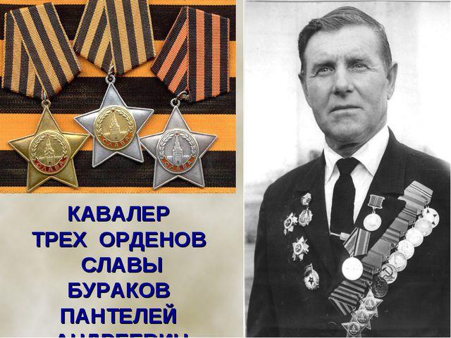 КАВАЛЕР ТРЕХ ОРДЕНОВ СЛАВЫ БУРАКОВ ПАНТЕЛЕЙ АНДРЕЕВИЧ (Сержант)