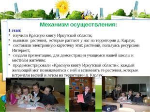 Механизм осуществления: 1 этап: изучили Красную книгу Иркутской области; выяв