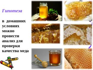 * Гипотеза в домашних условиях можно провести анализ для проверки качества меда
