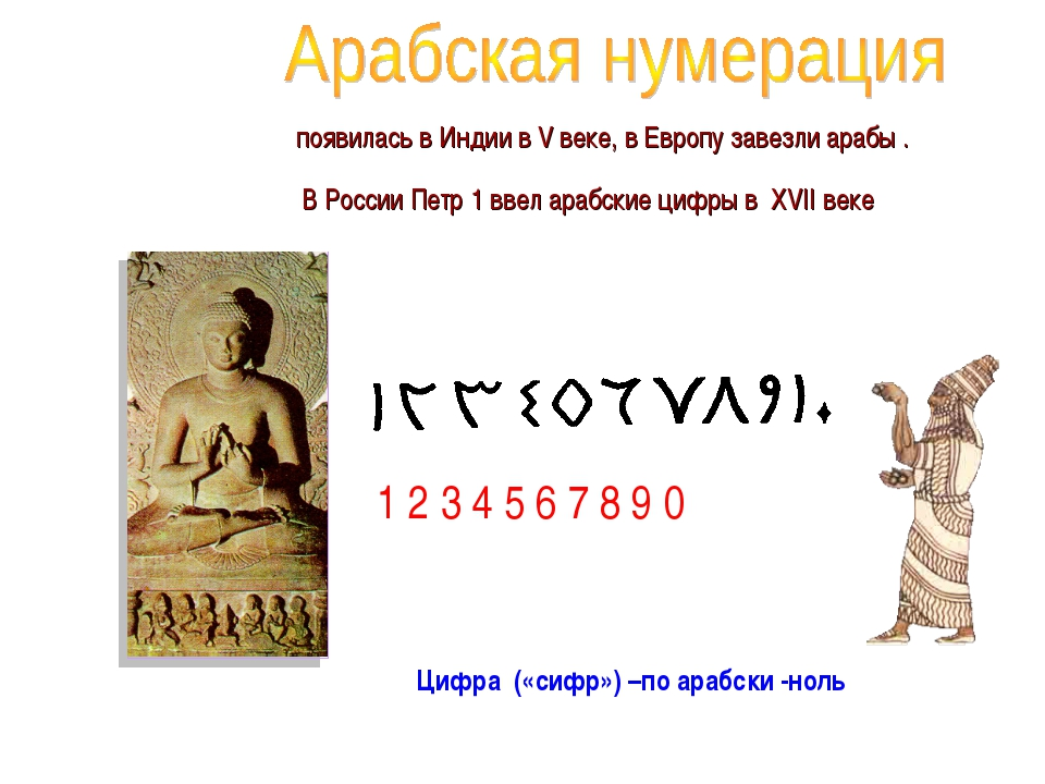 появилась в Индии в V веке, в Европу завезли арабы . В России Петр 1 ввел ар...