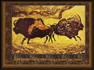 Древние бизоны (наскальные рисунки)