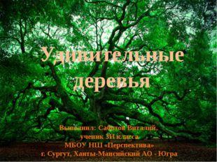Удивительные деревья Выполнил: Сабитов Виталий, ученик 3И класса МБОУ НШ «Пер