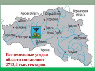 Все земельные угодья области составляют 2713,4 тыс. гектаров.