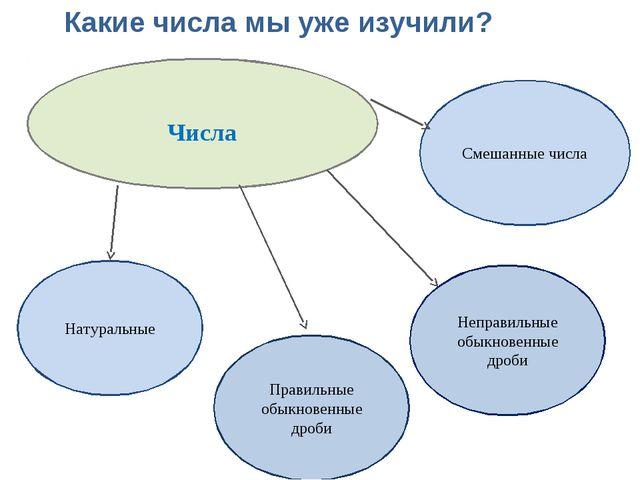 Числа Смешанные числа Натуральные Правильные обыкновенные дроби Неправильные...